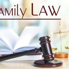 אילו ערכאות כפופות לחוק?